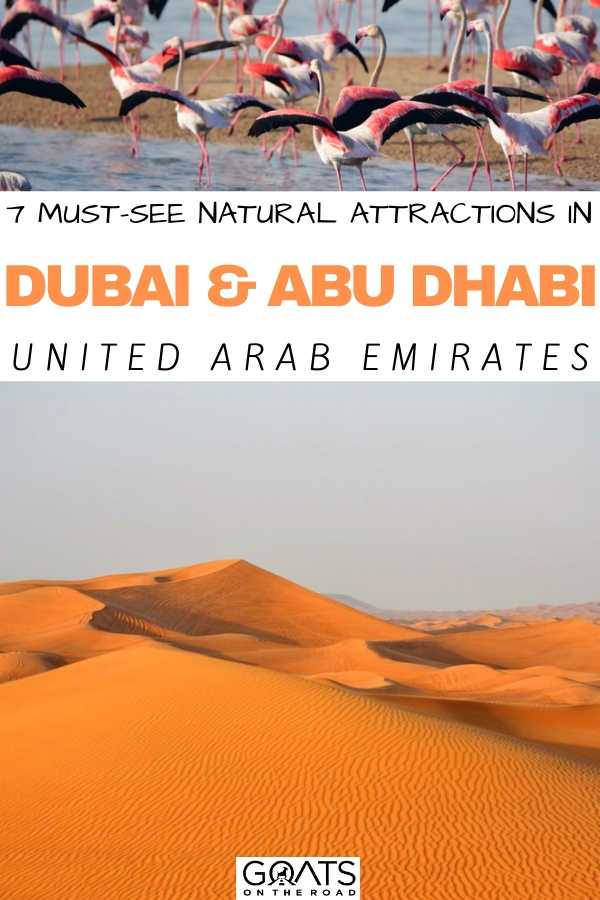 """""""7 Must-See Natural Attractions in Dubai and Abu Dhabi"""