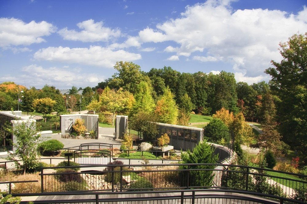 asheville activities visit the Arboretum