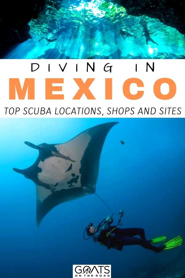"""Diving in Mexico: Top Scuba Locations, Shops and Sites"