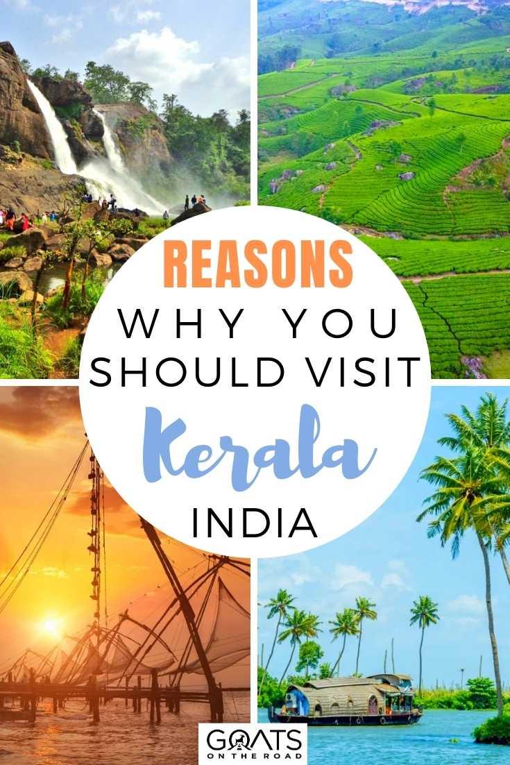 Reasons Why You Should Visit Kerala, India