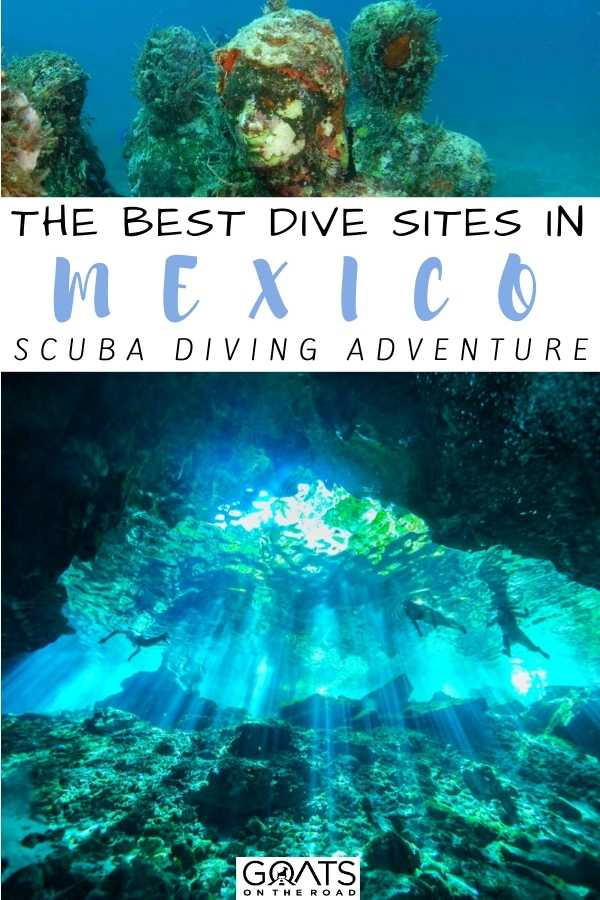 """The Best Dive Sites in Mexico"