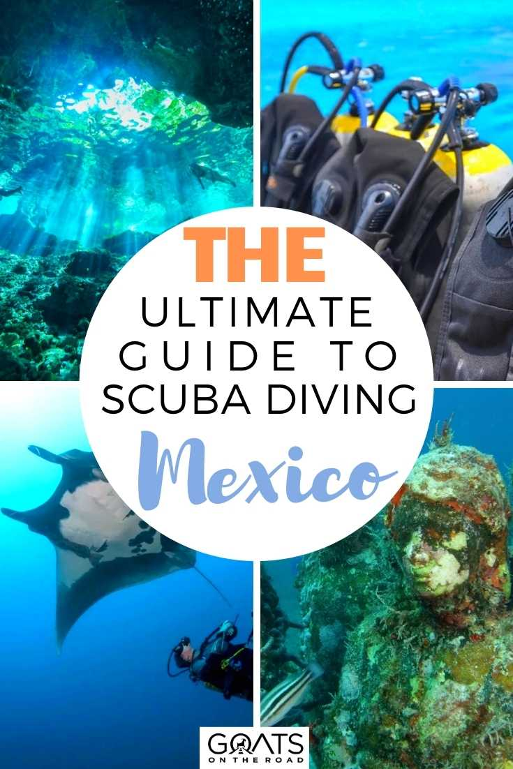 The Ultimate Guide to Scuba Diving Mexico