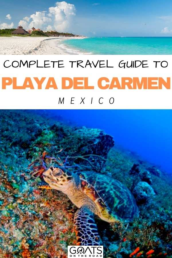 """Complete Travel Guide To Playa del Carmen, Mexico"