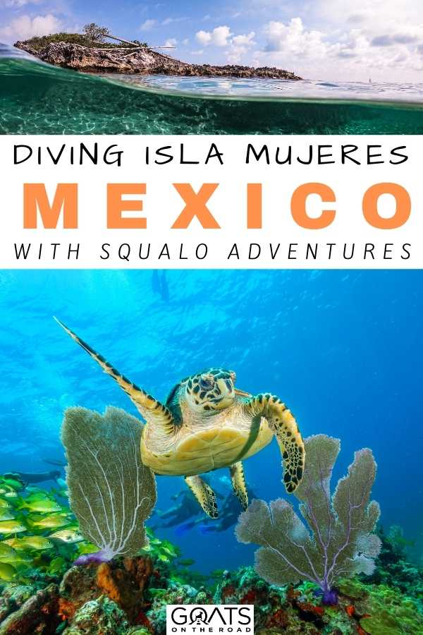 """""""Diving Isla Mujeres, Mexico With Squalo Adventures"""