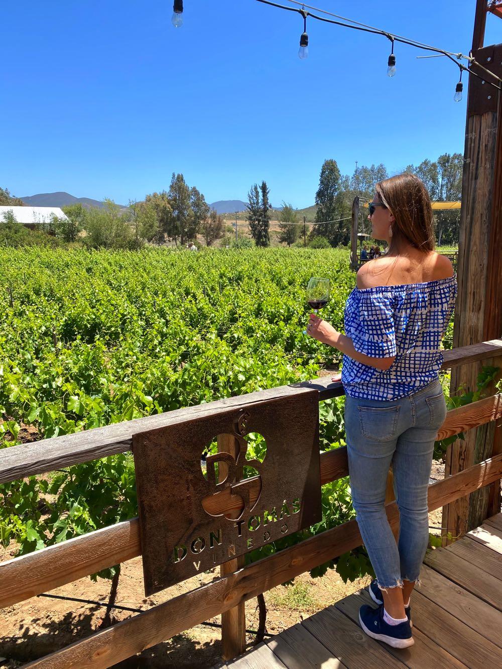 don tomas vineyard