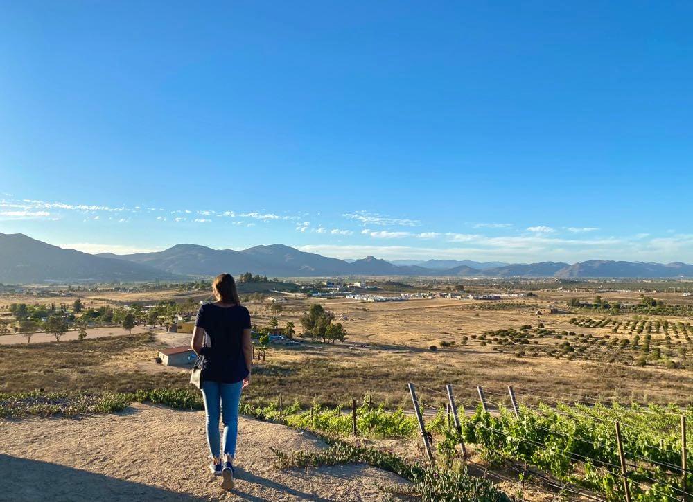 once pueblos travel valle de guadalupe