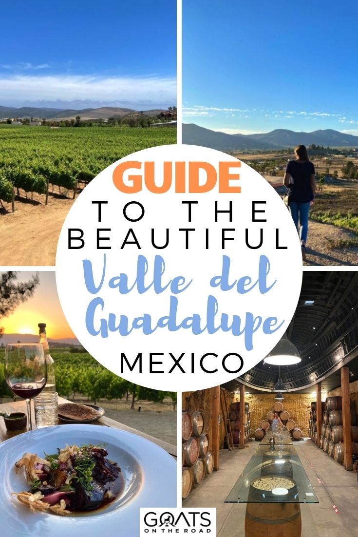Guide to the Beautiful Valle de Guadalupe, Mexico